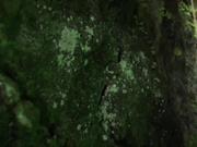 国产剧情AV大片~极品E奶美女乐乐【 痴女幽霊~鬼姬杯】去乡下住一晚出没想到却撞了个漂亮女鬼了《国语中文字幕》